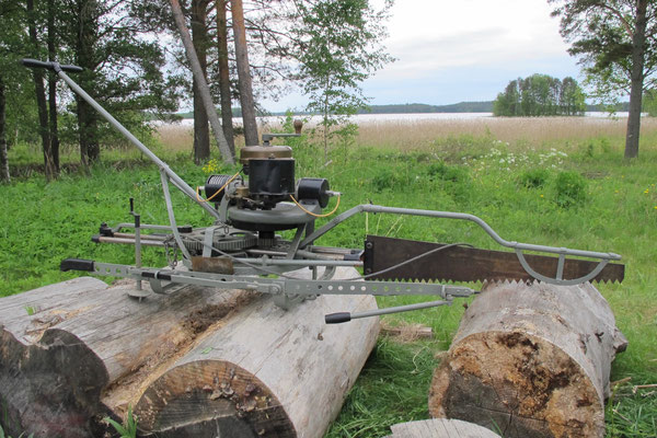 ARBOR TYP 2  -  Fuchsschwanzsäge aus Finnland
