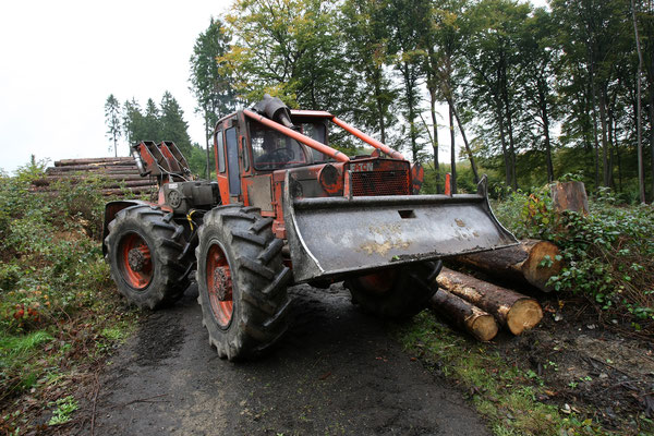 Timberjack 225
