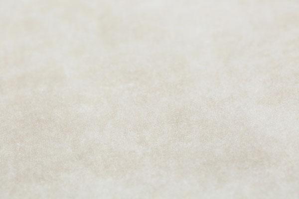 製綿後のメキシコ綿