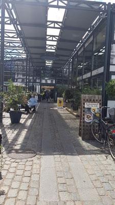 Markthalle von Kopenhagen