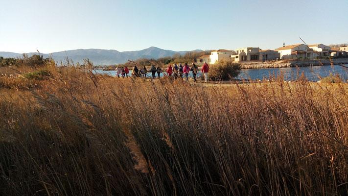 Saint Cyprien - La lagune - 5 décembre 2017