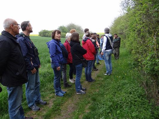 NABU Vogelstimmenwanderung am Haselsee Hünfeld am 7.05.2017