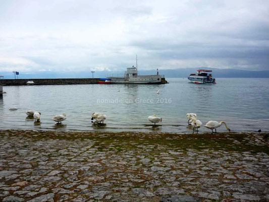 Les bords du lac d'Ohrid