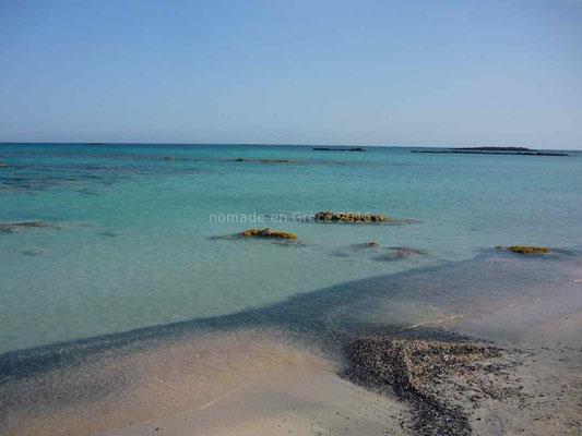 Mais en fait il ne s'agit que de petits fragments de coraux et coquillages qui colorent le sable en rose.