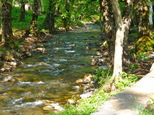 Une rivière traverse le terrain