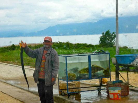Marchand de poisson au bord de la route