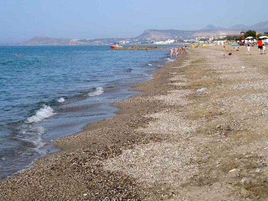 La plage où viennent pondre les tortues careta careta