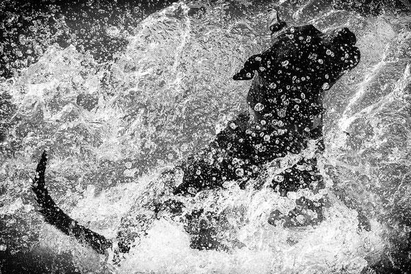 ' Splash ! '