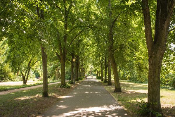 Im Stadtpark von Brandenburg