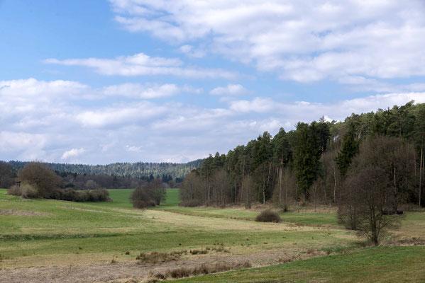 Im Burgwald