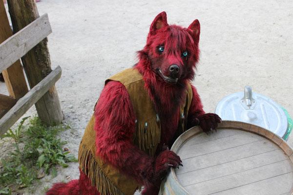Wolf-Bold