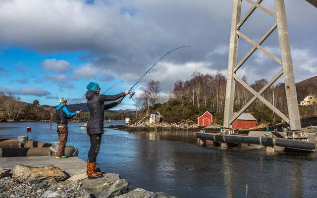 Fischen am Fjord, die Zweite.