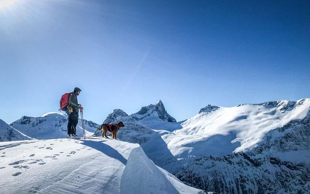 Sverre und Hund Rando auf der Frauenscharte schauen über den Fjord nach Hause.