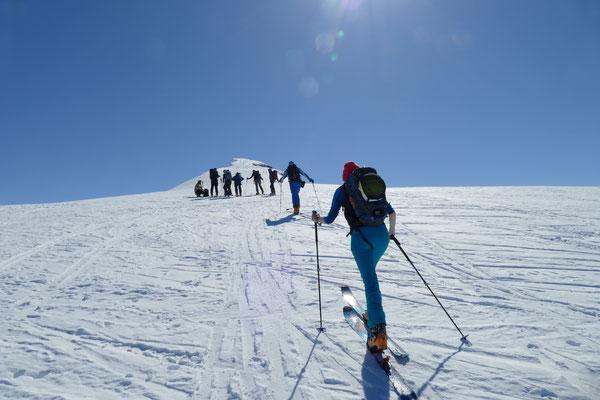 Der Gipfelhang des Skarasalen.