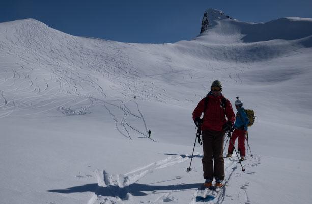 Blick retour auf den Gipfelhang - die 10 Spuren (2x5) von links sind unsere ;-)