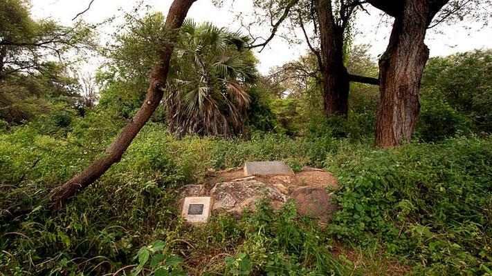 La tomba, Nel Meru National Park, di Elsa. Accanto alla leonessa sono state deposte la metà delle ceneri di Joy Adamson.