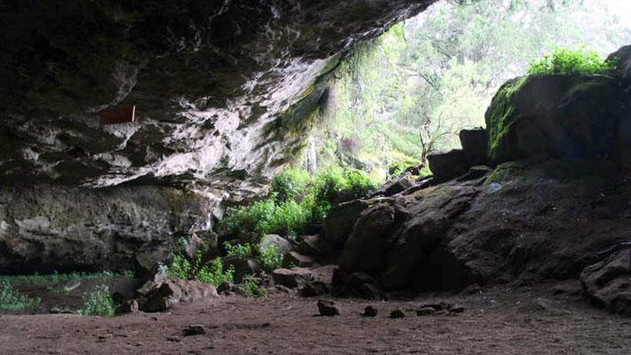 Grotta Kitum - Mt. Elgon National Reseve