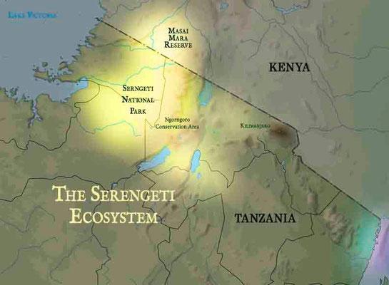 Ecosistema del Serengeti