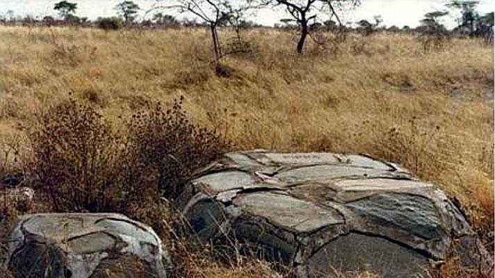 La tomba, nel Meru National Park, del ghepardo Pippa e la metà delle ceneri di Joy Adamson. A fianco, probabilmente, la tomba di un cucciolo di Pippa.
