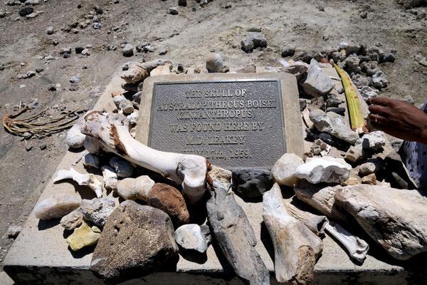 Lapide commemorativa del rinvenimento nel 1959 del cosiddetto Australopithecus boisei o Zinjanthropus, ad opera della moglie di Louis Leakey, Mary.
