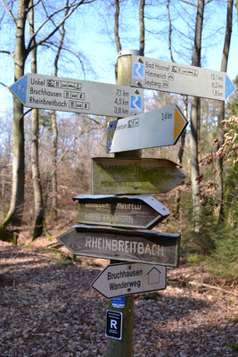 Viele Wege durch das südliche Siebengebirge...