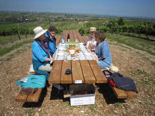 Kutschfahrt - Pause in den Weinbergen