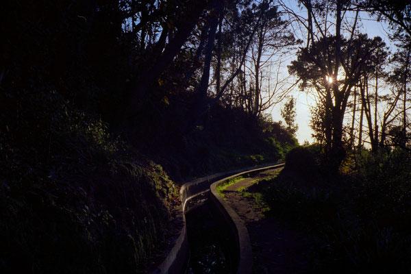 Camera: Minolta Hi-Matic 7sII  -  Film: Kodak  Extar 100