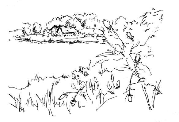 Skizze von Haithabu