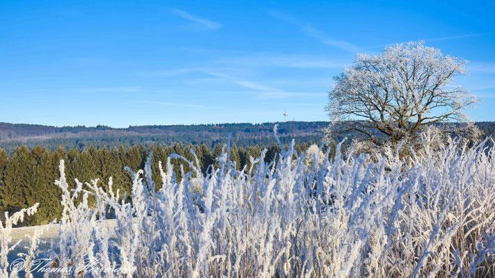 der erste Frost - in der Nähe von Breungeshain
