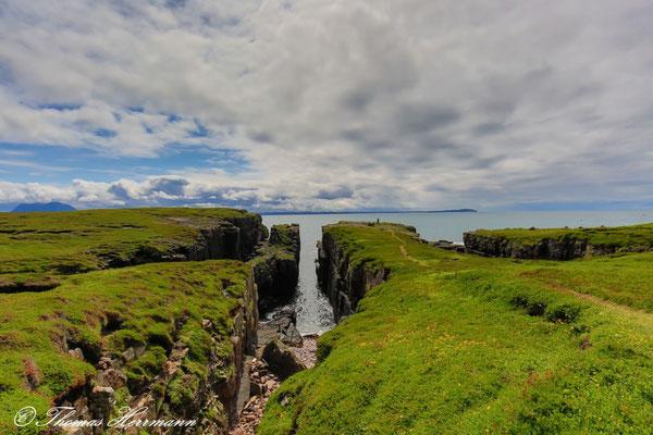 Vogelinsel Handa - Schottland 2015