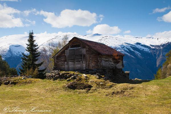 Aurlandsfjord - Hochebene 2014