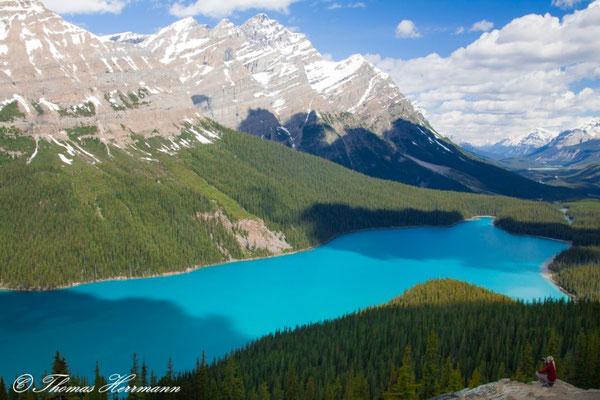 Peyto Lake - Kanada 2011