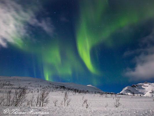 Aurora Borealis - Nordnorwegen Februar 2016