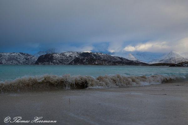 Küste in Sommaroy - Tromsö 2015