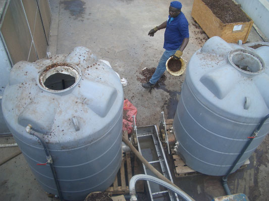 Hydrolyse der T3estbiogasanlage