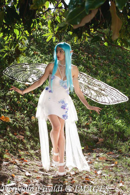 Dragonfly fairy costume and wings
