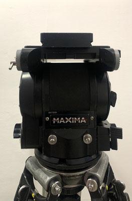 Puhlmann Cine - CARTONI MAXIMA HEAD