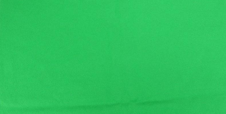 Puhlmann Cine - Green Solid