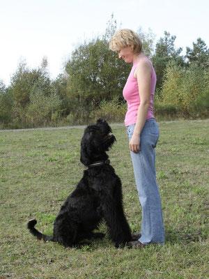 Hundeschule mit Spass und Erfolg