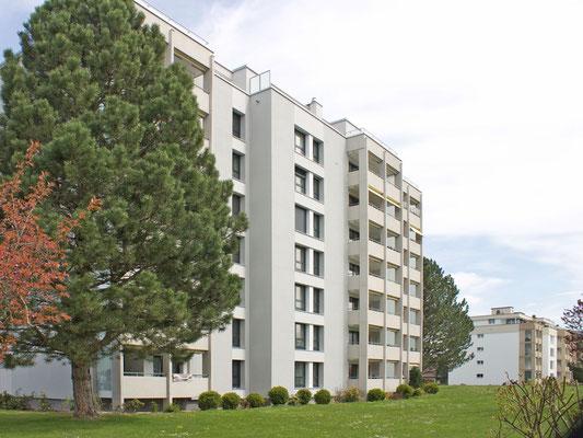Umbau und Sanierung MFH Forelstrasse, Ostermundigen