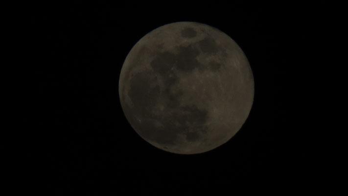 La lune est énorme ce soir