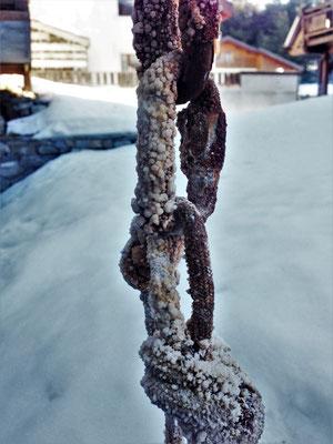 Le salpètre, une fâcheuse tendance à tout recouvrir... Glacenost, cascade de glace Haute-Maurienne