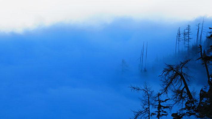 Belle ambiance avec ce brouillard