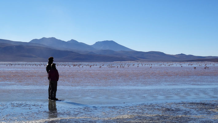 Région Sud Lipez - La Laguna colorada