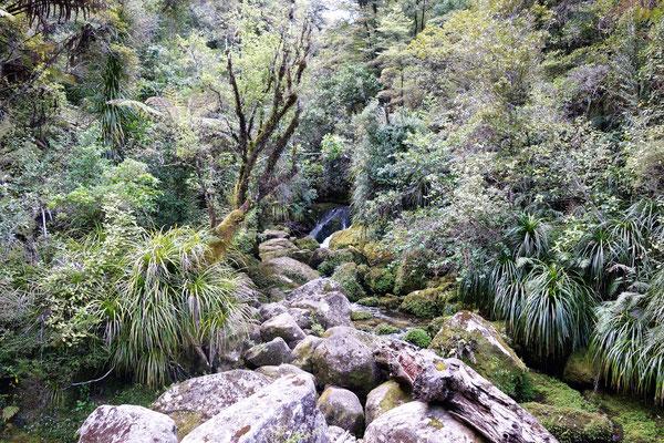 Croisière & rando dans le Parc National