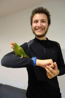 Pia, le perroquet de nos hôtes !
