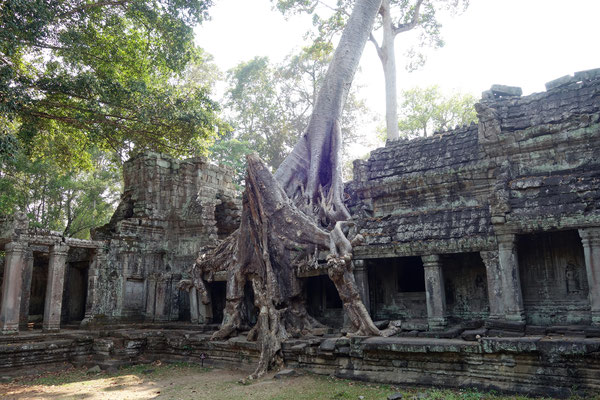Temple Preah Khan