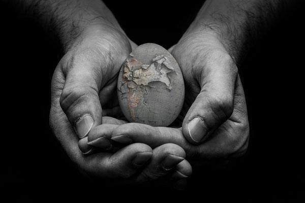"""""""save"""" - michaela ertelt - 82. Bundesfotoschau 2014 des DVF Medaille, freies Thema"""