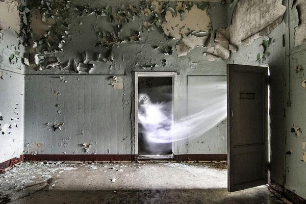 "michaela ertelt - ""geisterhand"" - medaille süddeutsche fotomeisterschaft 2013 - 1. Platz Freies Thema"
