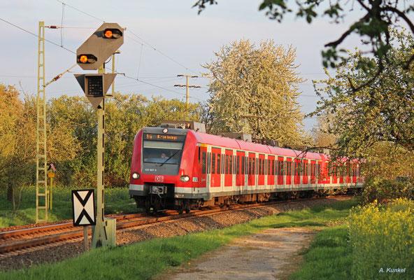 423 907 kurz vor Kronberg Süd, 10. April 2017.